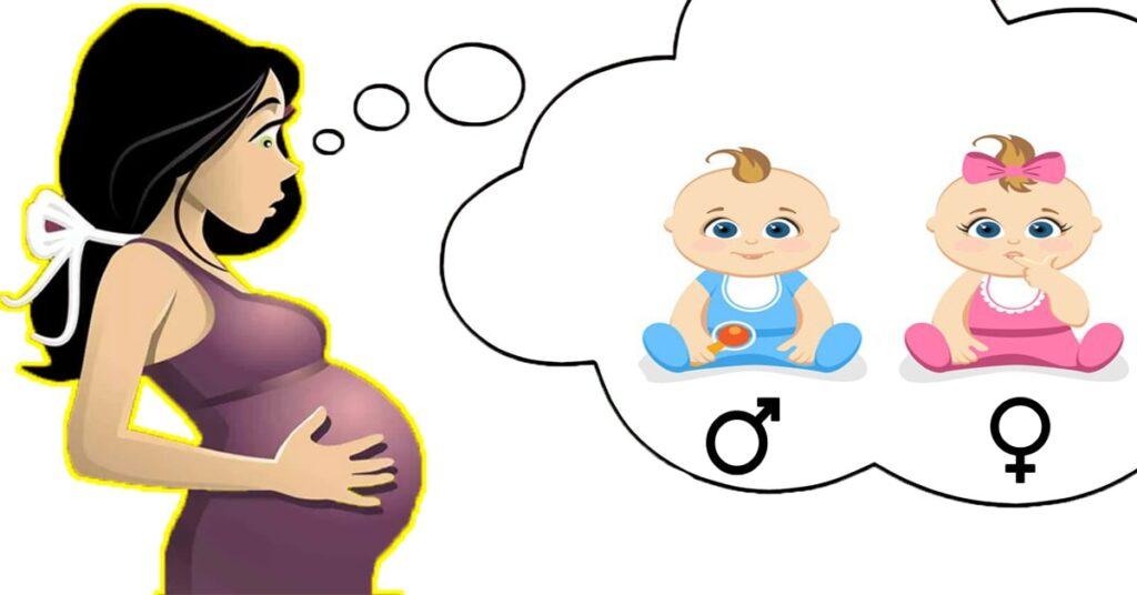 pregnancy health insurance